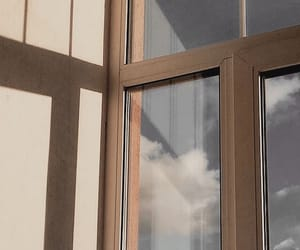 tumblr and window image