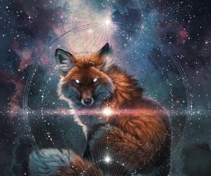 animals, foxes, and art image