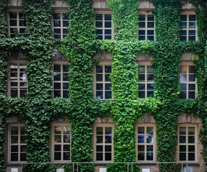 architecture, building, and green image