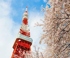japan, tokyo tower, and travel image