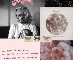 bloom, Collage, and drawings image