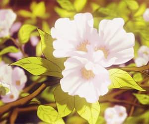 anime, flowers, and gif image