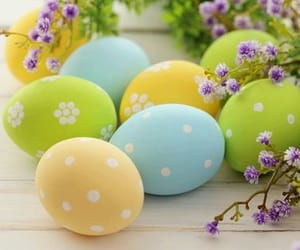 hard boiled eggs, holiday, and colored eggs image