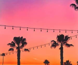 colors, moon, and palm trees image