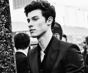 shawn mendes and grammys image