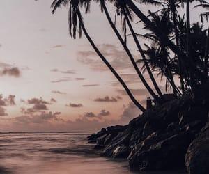beach, nature, and scenery image