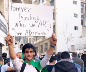 dz and free algeria image