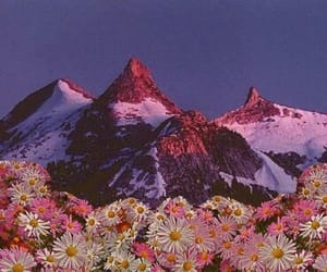 flowers, mountains, and indie image