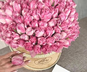 bouquet, flowers, and luxury image