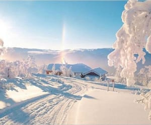 snow, winter, and norway image