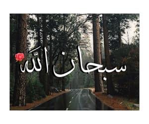 islam, islamic, and nature image
