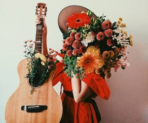beautiful, bloom, and flowers image