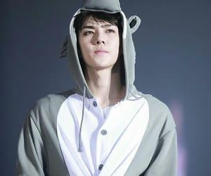 boy, handsome, and korea image
