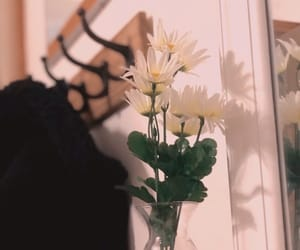 beauty, decor, and flower image