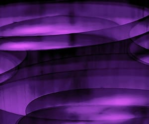 abstract photography and purple image