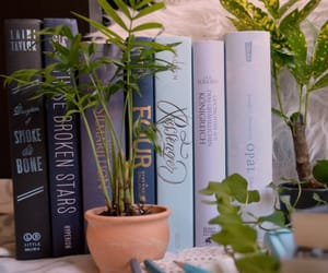 books, flowers, and nature image