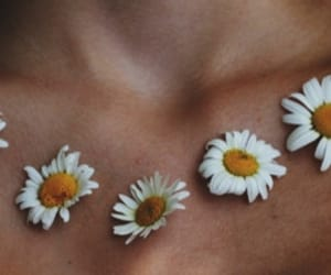 beauty, flowers, and necklace image