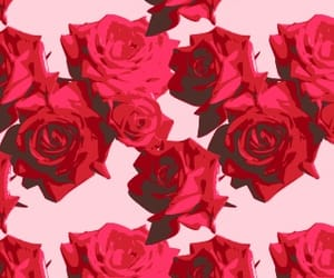 background, flowers, and rose image