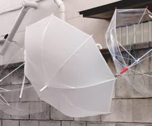 allison, the umbrella academy, and clairo image