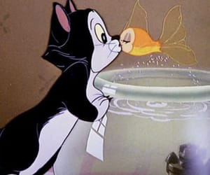 disney, cat, and fish image