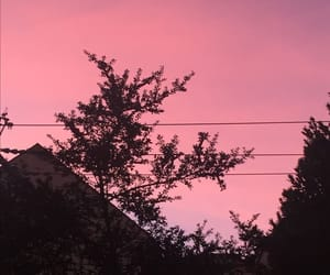 aesthetic, grunge, and pink skies image