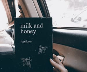 book, milk and honey, and photography image