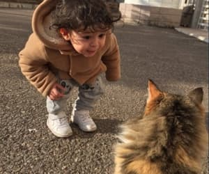 baby, cat, and animals image