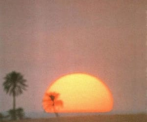 sunset, aesthetic, and sun image
