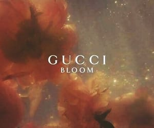 flowers, gucci, and aesthetic image