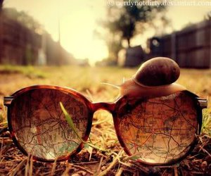 snail, map, and sunglasses image