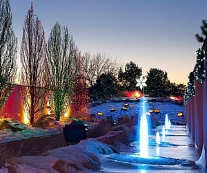 christmas lights, colorado, and denver image