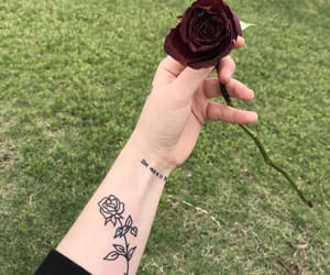 rosa, tattoo, and tumblr image