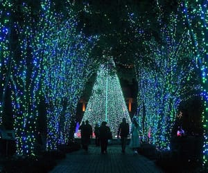 atlanta, christmas lights, and atlanta botanical garden image