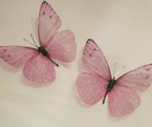 butterfly, pink, and art image