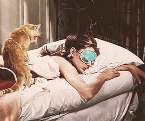 audrey hepburn, cat, and Breakfast at Tiffany's image