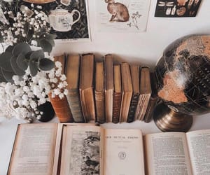 books, cozy, and vintage image