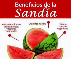 comida, watermelon, and sabias que image
