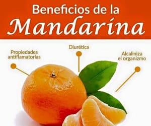 comida, mandarina, and sabias que image