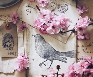 animals, bird, and book image