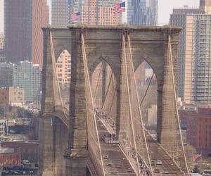 bridge, new york, and photography image
