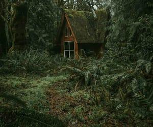 honeymoon, beautiful nature cottage, and cabin beautiful wooden image