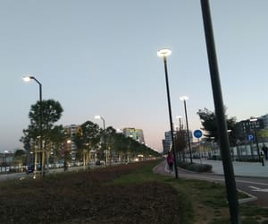 city, light, and nature image