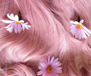 pink, hair, and flowers image