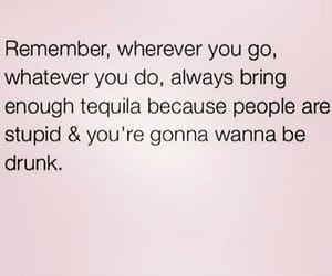 advice, tequila, and reminder image