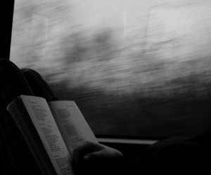 black and white, read, and book image