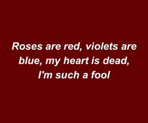 Lyrics, rose, and benny blanco image