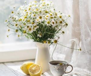 coffee, flowers, and lemon image