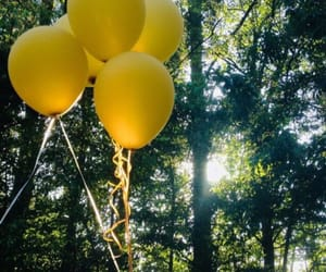 balloons, yellow, and nature image