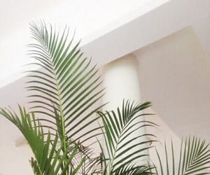 green, pastel, and plants image