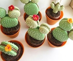 food, cactus, and desserts image